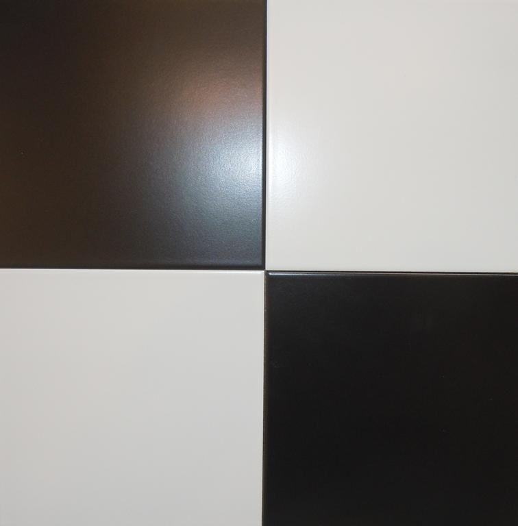 Black And White Ceramic Tile Home Designs
