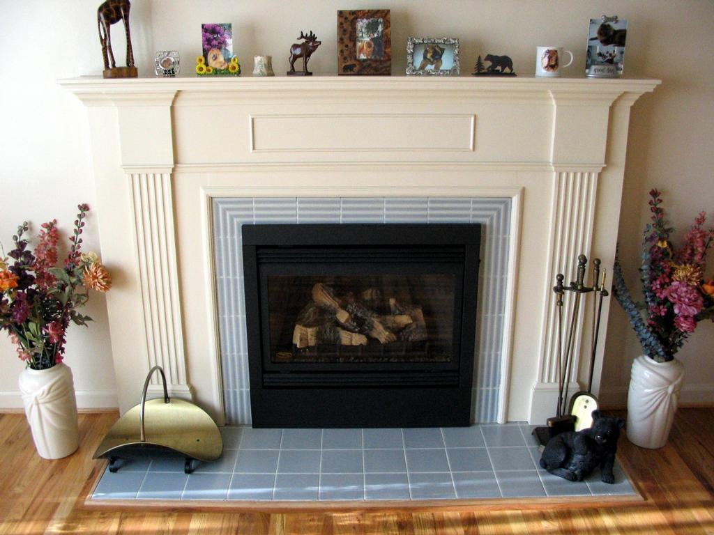 Alpinegas Fireplaces Fireplaces
