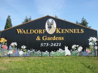 Waldorf Kennel - Ridgefield, WA