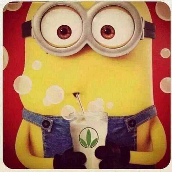 Minion sipping herbalife shake by herbalife independant