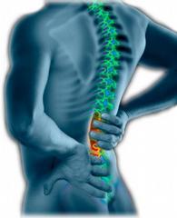 Action Chiropractic & Rehab - Mesa, AZ