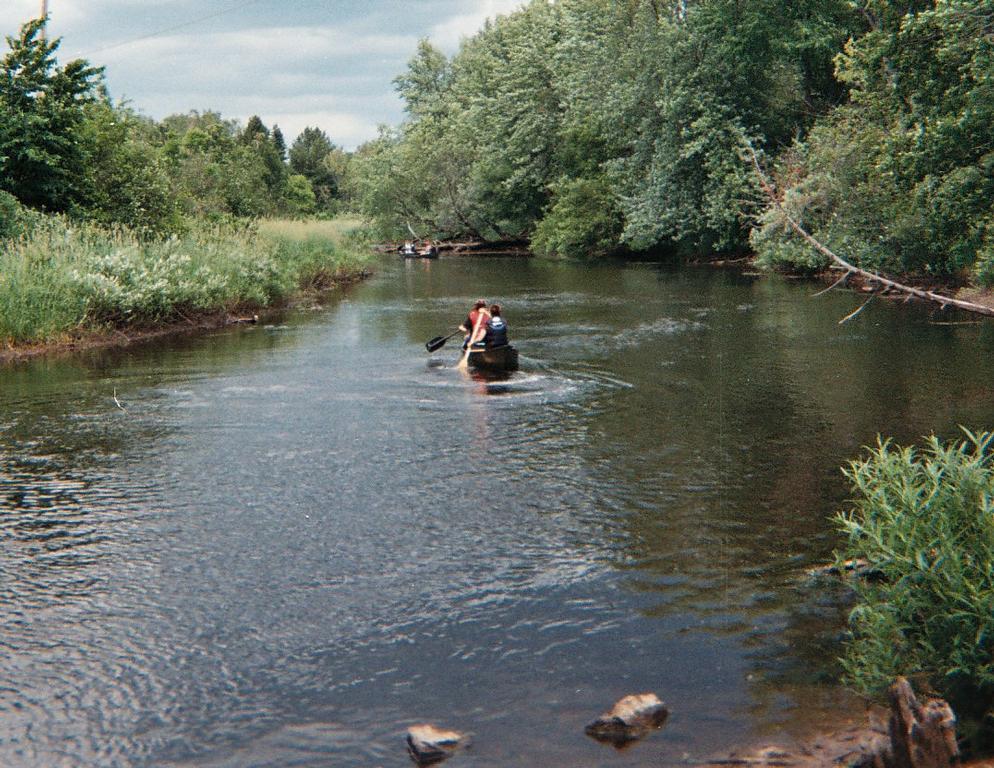 Kayak On Roof >> The Woods Tahquamenon River Canoe & Kayak Trips - Newberry MI 49868   906-203-7624