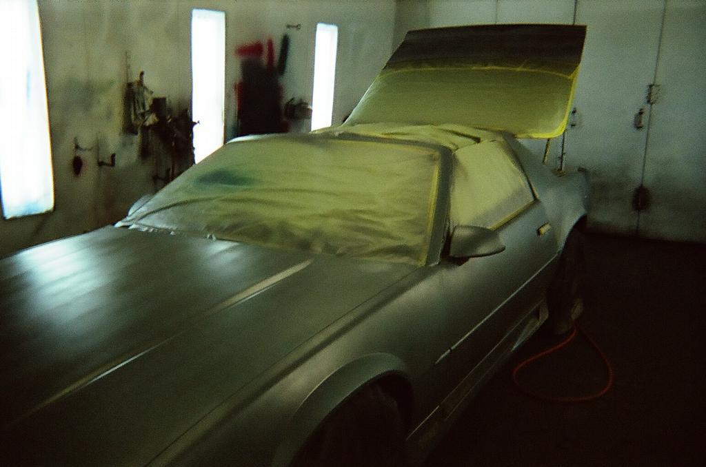Mako Car Paint Cost
