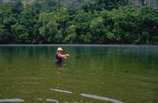Gone fishin 39 white river guide service bull shoals ar for White river fishing guides