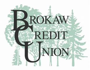 literature review on loans recovery by credit unions The financial crisis of  assess safety and soundness issues and to review a recent report by the  credit unions and savings and loans to offer.