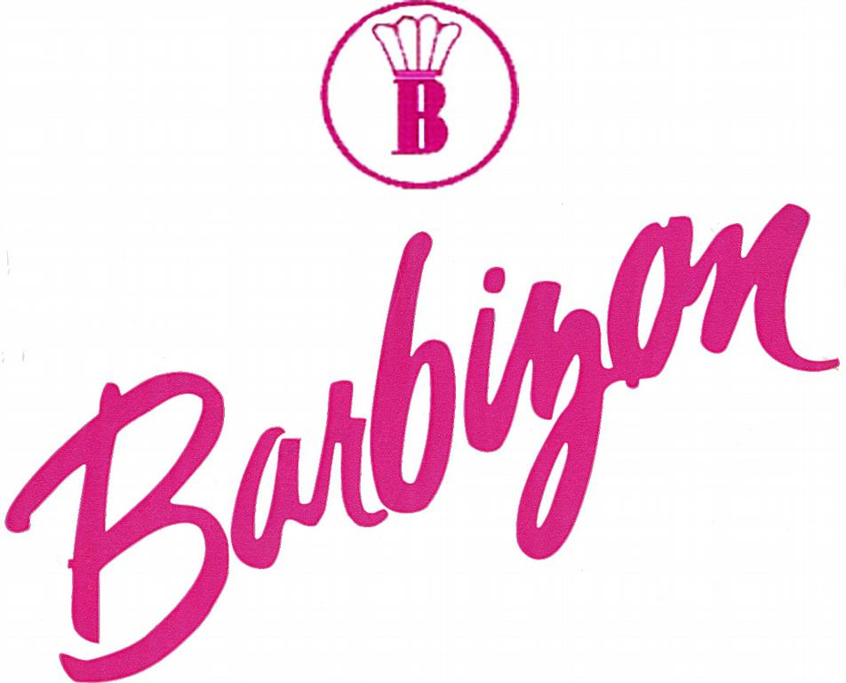 Barbizon Modeling and Acting School - Towson MD 21204 | 800-330-8361