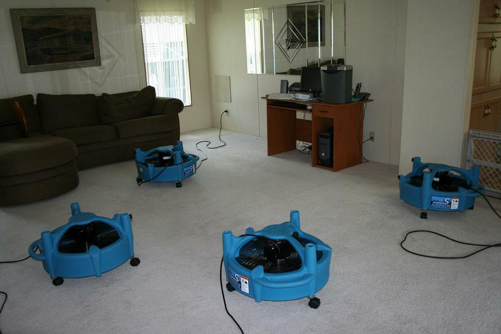 Carpet Cleaning Kissimmee Fl Upholstery Cleaning