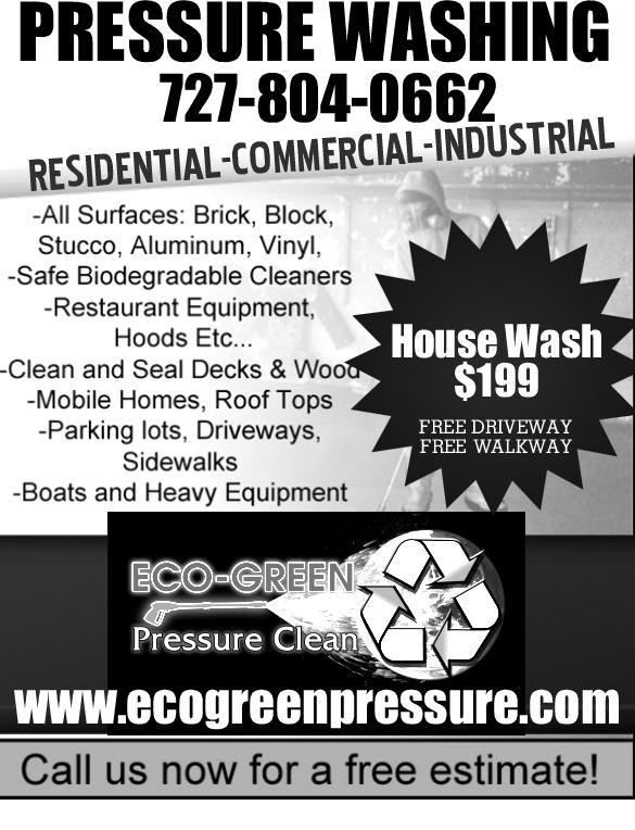 Ecogreenpressure Flyer1 From ECO GREEN Roof Clean amp Pressure Washing
