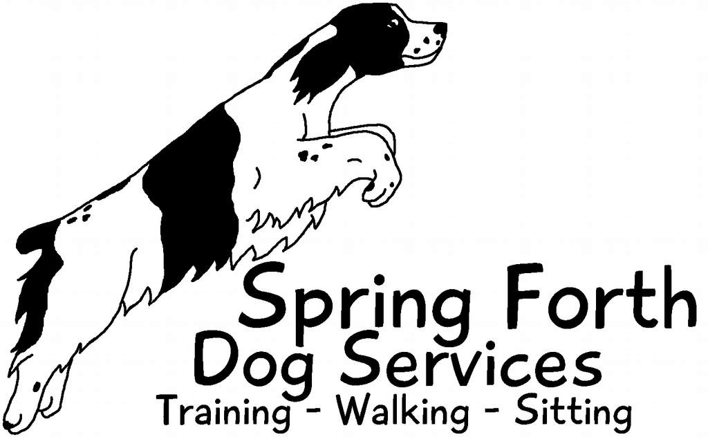 Spring Forth Dog Training