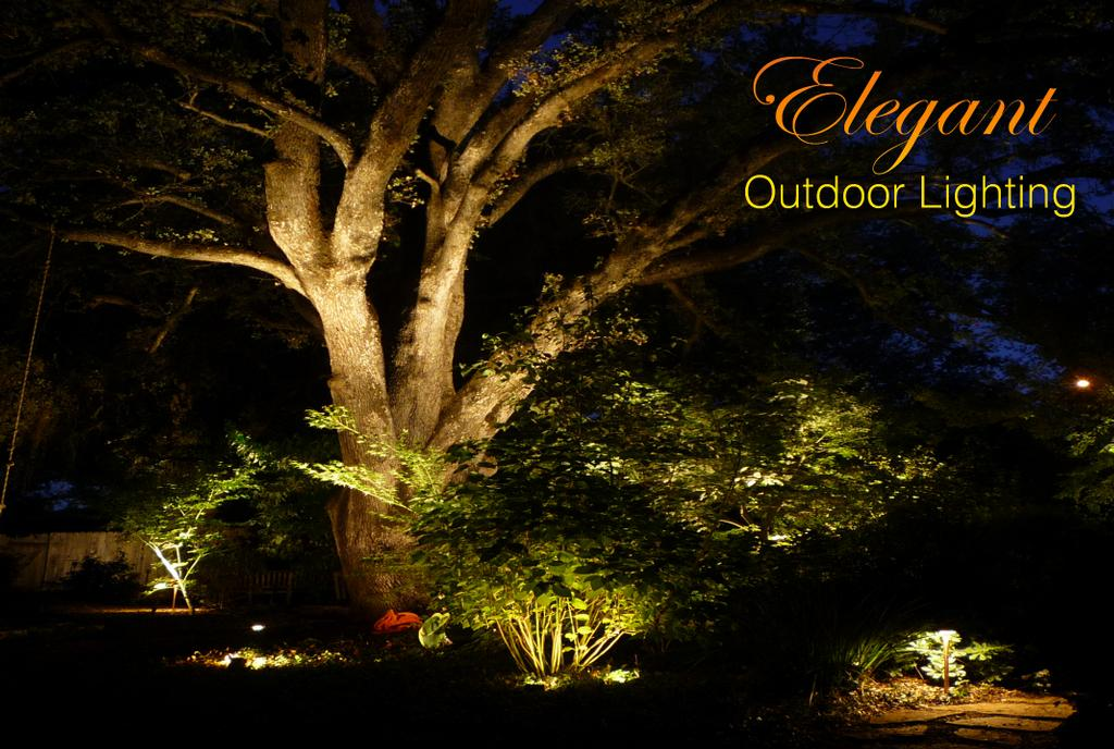 Outdoor Landscape Lighting Professional : Backyard by landscape lighting design professional install