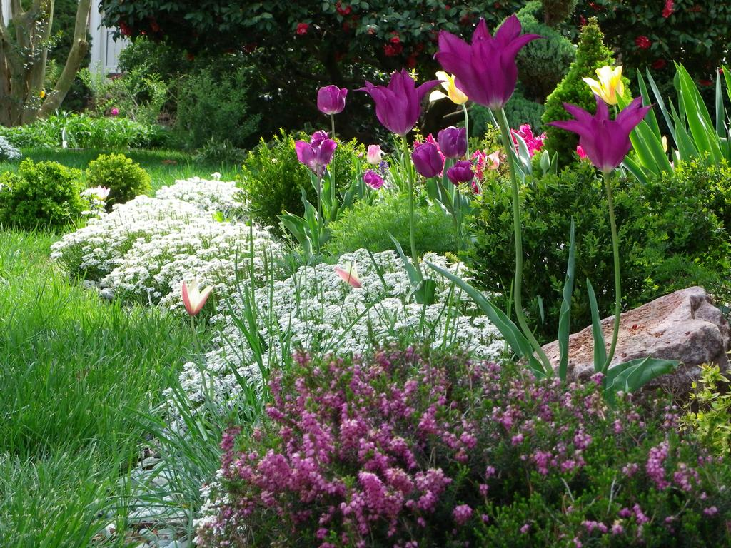 Beautiful Landscape Designs - Viewing Gallery