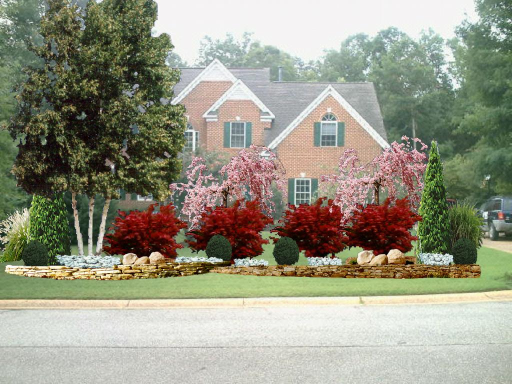 For landscaping for Landscape trees