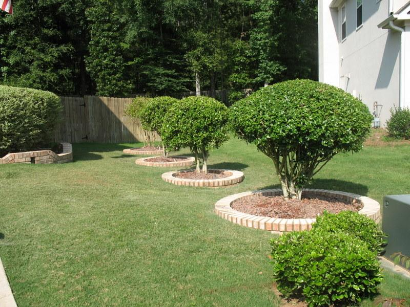 Tree Flower Bed : ... : Brick borders around your trees really make the trees stand out