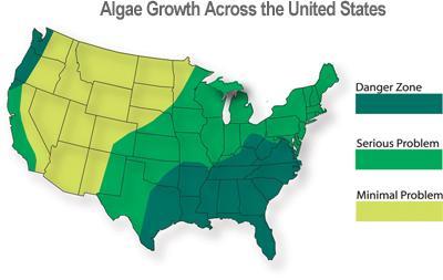 Algae Growth Map