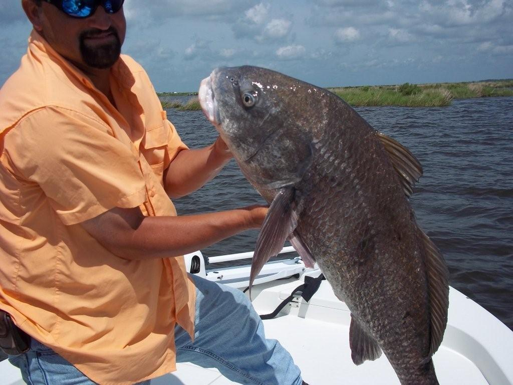 Pictures for big dog fishing charters in lafitte la 70067 for Black dog fishing