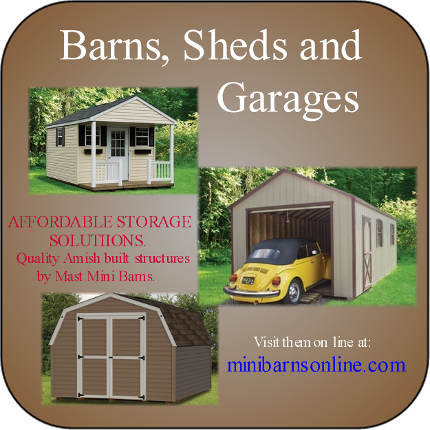 Pictures For Mini Barns At Heritage Custom Builders In Paw