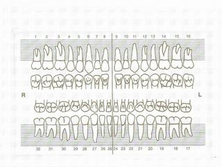 periodontal chart template - printable template of teeth search results calendar 2015