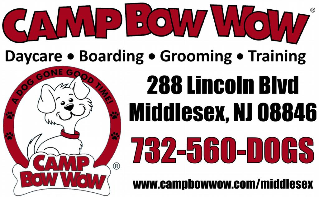 Camp Bow Wow Dog Training