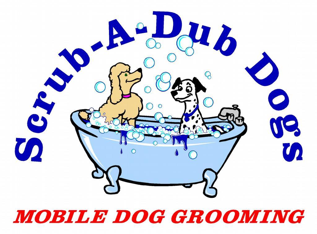 Dog Grooming Marlton Nj