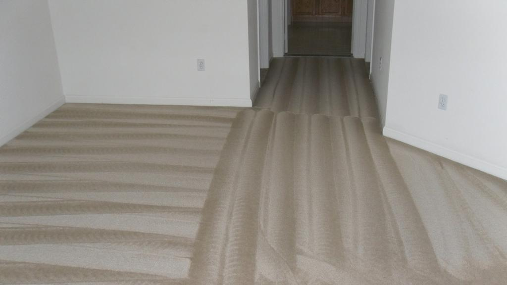 Carpet Cleaning Maryland from Clean Carpet Baltimore in ...