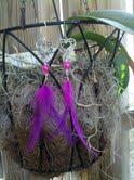 """Earrings Pink/purple 7"""""""