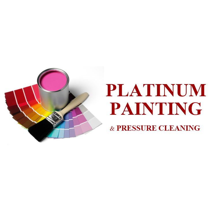 Platinum Painting Amp Pressure Cleaning Brandon Fl 33511
