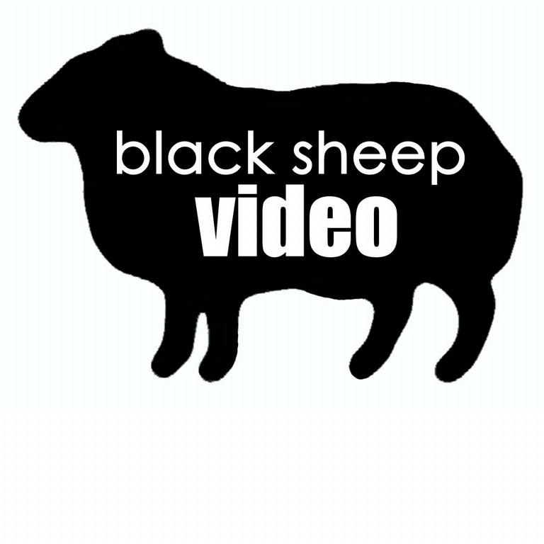 black sheep video