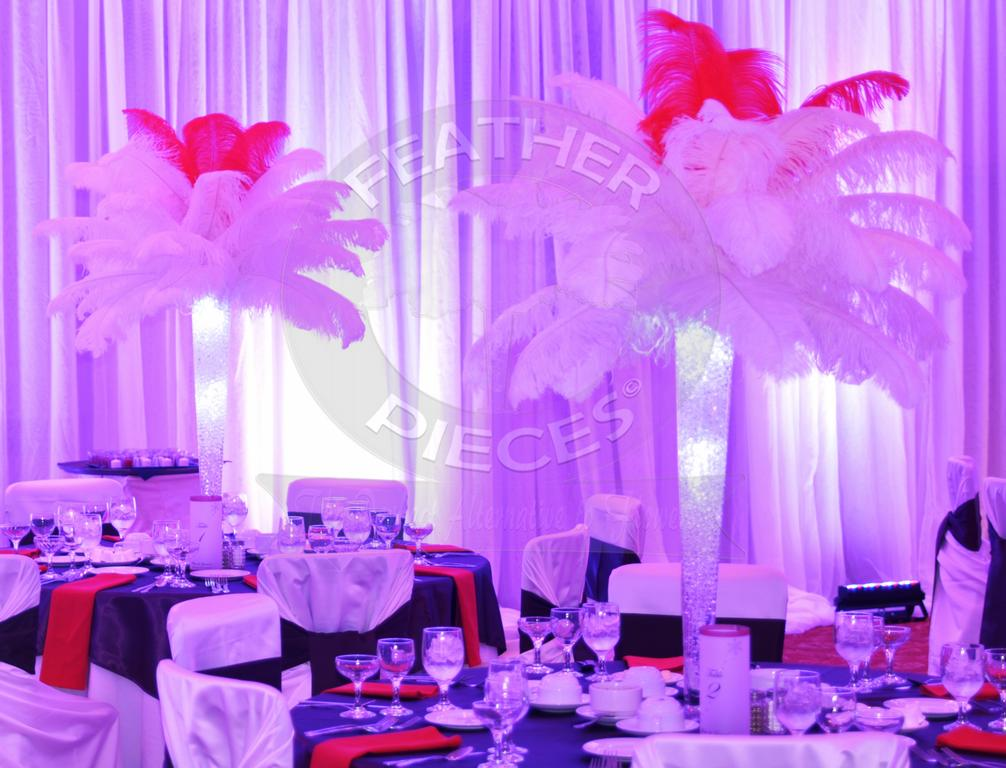 Pictures for rent ostrich feather centerpieces by
