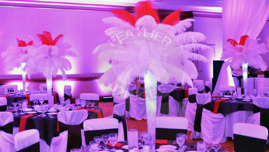 Rent Ostrich Feather Centerpieces By Featherpieces Richmond Va