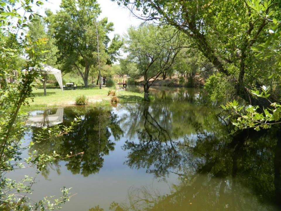 Pictures for la siesta campgrounds in arivaca az 85601 for Small pond fishing