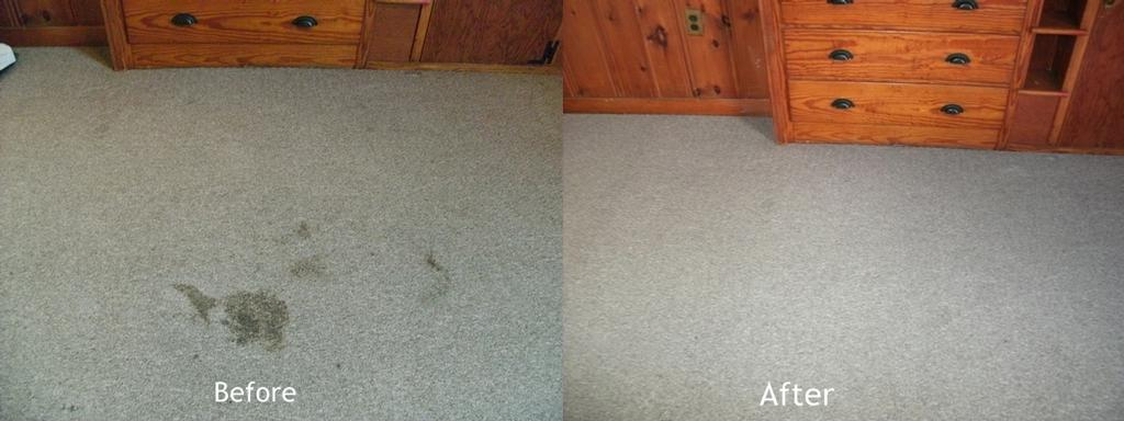 Delgado Cleaning Service - Norwich CT 06360 | 860-889-3677