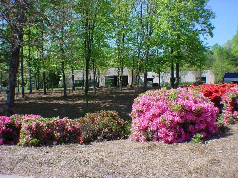 Pictures For Old Vineyard Behavioral Health Services In Winston