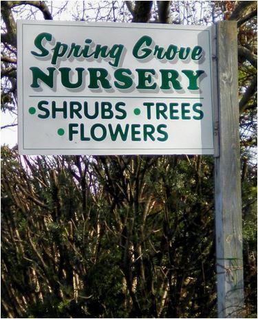 Plant Nursery East Earl PA - Spring Grove Nursery by Spring Grove