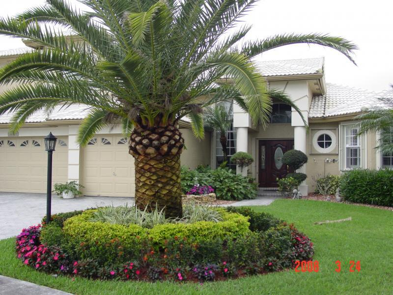 Merveilleux Cheap Landscaping Ideas For Backyard Landscape Planting Ideas Central Florida  Landscaping Ideas #Landscaping | Landscaping | Pinterest | Cheap Landscaping  ...