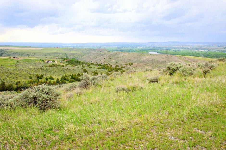 Horse Property For Sale Laurel Mt