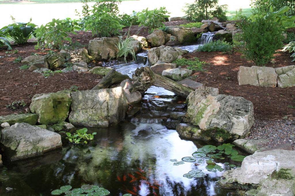 Pictures for aquascape designs in saint charles il 60174 for Pond stream design