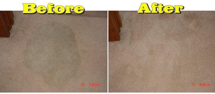 Carpet Before After Jpg From Ameraclean Denver Carpet