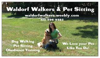 Dog Obedience Training St Mary S County Md