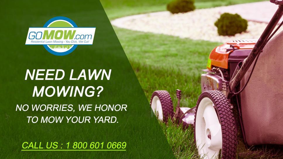 Gomow Lawn Care Services Richardson Tx 75080 800 601 0669