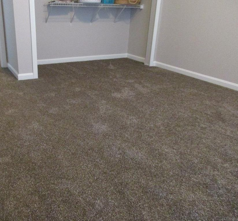 Image Result For Carpet Stores Louisville Ky