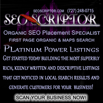 by SEOScriptor Organic SEO Placement Specialist