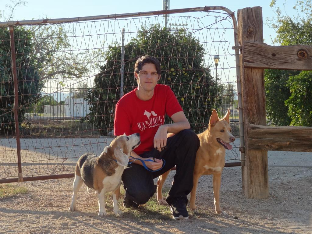 Best Pet Insurance For Dogs In Arizona
