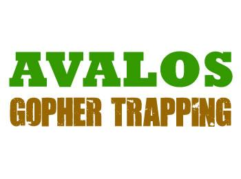 logo-profile by Avalos Gopher Trapping San Mateo