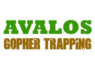 Avalos Gopher Trapping San Mateo