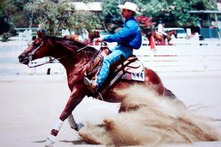 Rick Baer Training Stables/Reining & Western Horse Trainer - Huntington Beach, CA