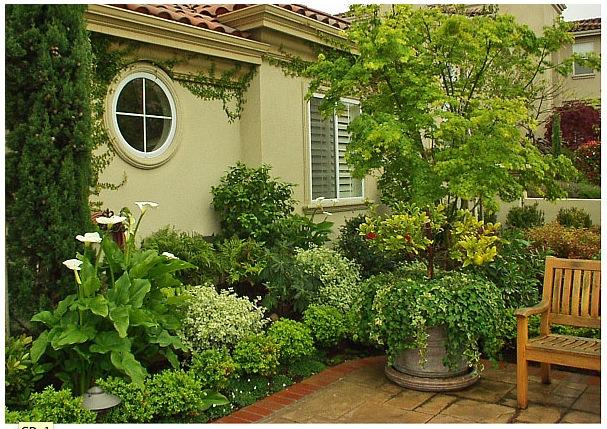 Garden Design And Landscaping - Home Design. Home Design And Architecture Inspiration - garden design and landscaping