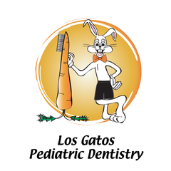 Los Gatos Pediatric Dentistry  Los Gatos Ca 95032  408. Chiropractor Federal Way Boston Trade Schools. Locum Tenens Physician Assistant. How To Start A Rental Property Business. Online Pre Nursing Courses Auto Glass Kent Wa. Kia Dealerships In Cincinnati Ohio. Promotional Items California. Keystone Dental Implants Http Traffic Monitor. Wine Pairing Appetizers Cellular Medical Alert