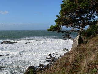 Vacation Rentals at Sea Ranch Lodge - The Sea Ranch, CA