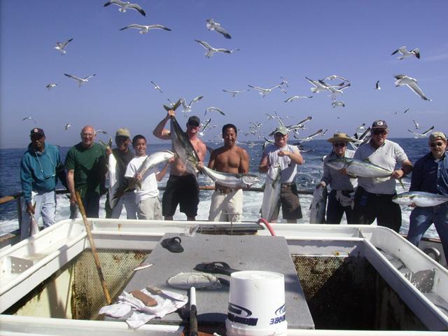 Seaforth Sportfishing San Diego Ca 92109 619 224 3383