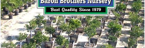 Index 09 06 By Baron Brothers Nursery